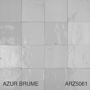 ARZ5061