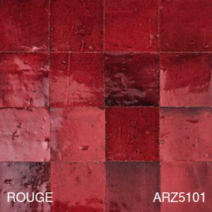 ARZ5101