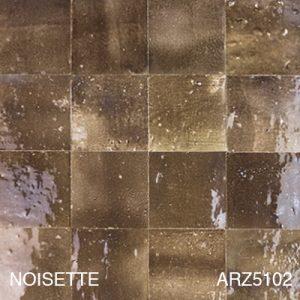 ARZ5102