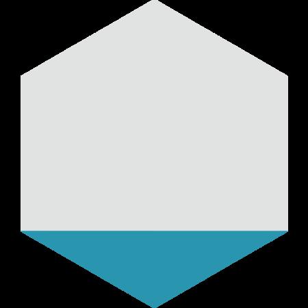 carreau hexagonal DELTA