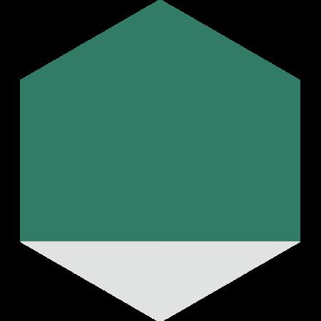 carreau hexagonal DELTA-BLANC